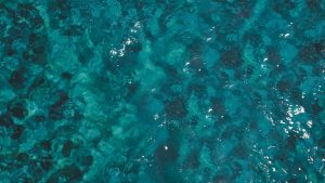 UM morje